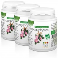 3 Harpagophytum Bio (Griffe du diable)