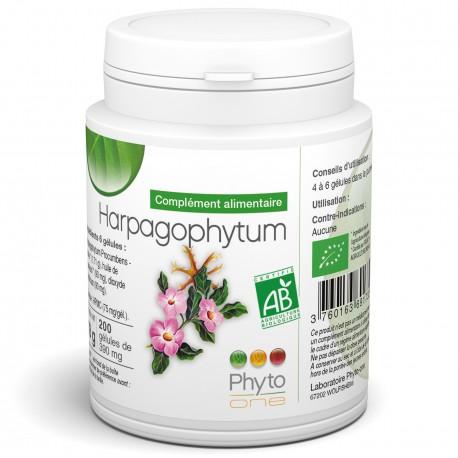 harpagophytum gélules