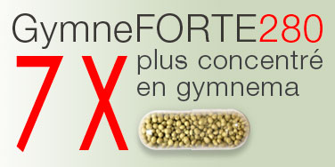 Gymnema concentré